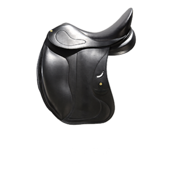 sattel_olympia.png